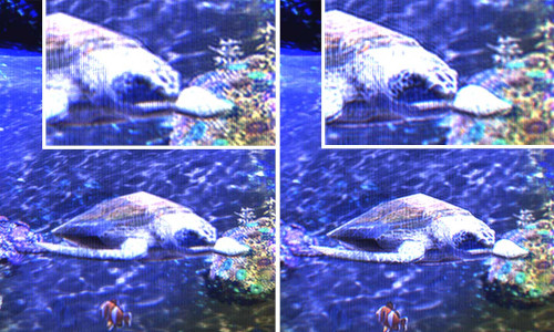Images from a full-color holographic movie.
